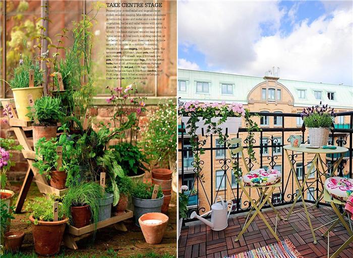 阳台植物平面图